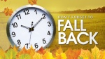blog_fall_back